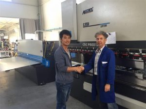 Cliente de Chipre Visite la máquina del freno de la prensa y la máquina de corte en nuestra fábrica